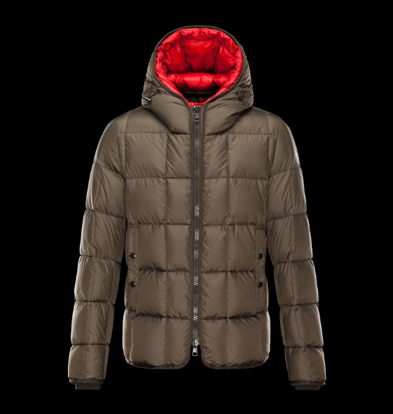 MONCLER GIBRAN Men Brown