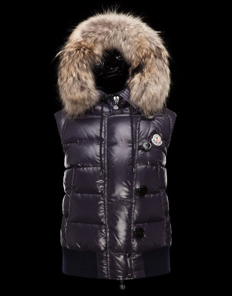Moncler Tarn Men Women Vest Purple