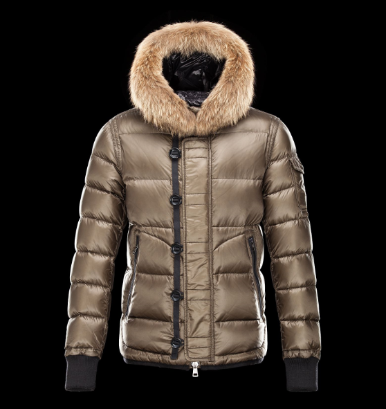 Moncler Marseille Men Jacket Gold