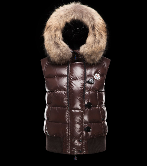 Moncler Tarn Men Women Vest Brown